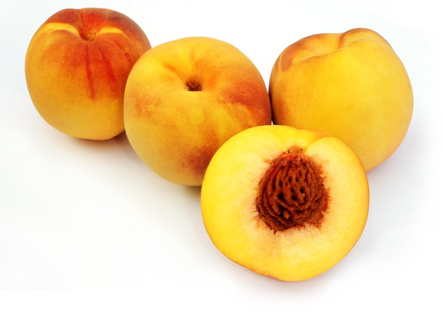Peach  Prunus persica