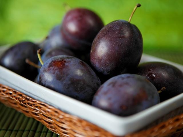 Plum – Prunus domestica, Prunus salicina