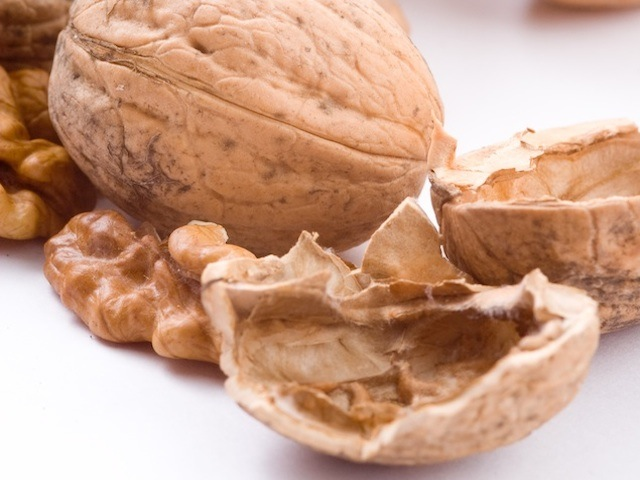 Walnuts – Juglans spp.