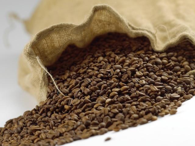Coffee - Coffea arabica and Coffea canephora