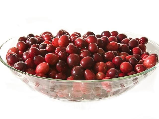 Cranberry - Vaccinium macrocarpon