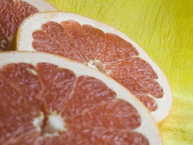 Grapefruit - Citrus spp.